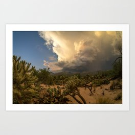 Sabino Monsoon Art Print