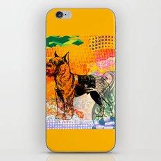 Schnauzer pop art iPhone & iPod Skin