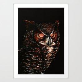 Owl, Barred Owl, Bird Art Print