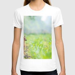 Little Doe (Color) T-shirt