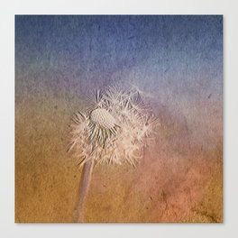 Time to seed II Canvas Print