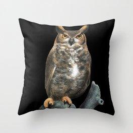 Superb Owl Sunday Throw Pillow