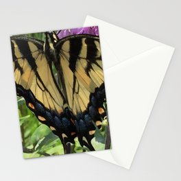 Swallowtail Stationery Cards