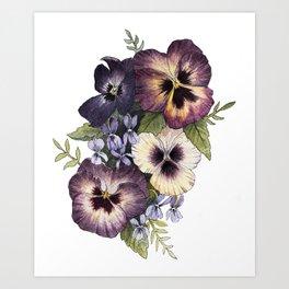 Watercolor Pansy Bouquet Art Print