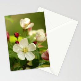 Budding trees Stationery Cards