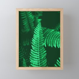 Pacific Northwest Fern Forest Adventure II Framed Mini Art Print