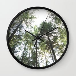 Looking up at the Pine Trees Wall Clock