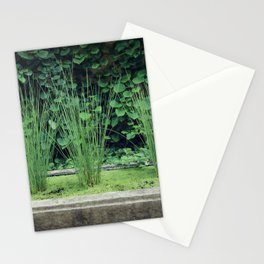 Water Grass Stationery Cards