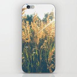 Golden Hour Hangout iPhone Skin