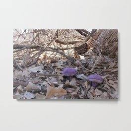 Knitted Violet-Gray Bolete Metal Print