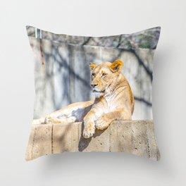 Purrfect Throw Pillow
