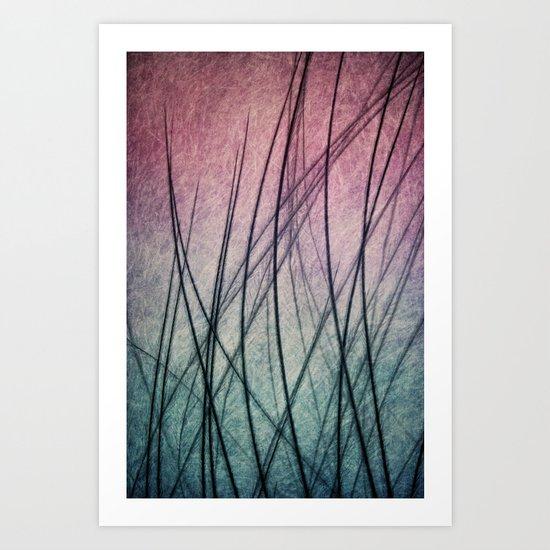 Feathered IV Art Print