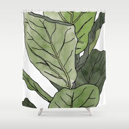 Ficus Lyrata Potted Plant.. Shower Curtain