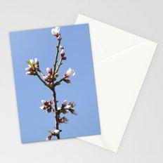 Blossom Branch Stationery Cards