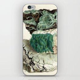 Vintage Mineralogy Illustration iPhone Skin