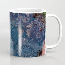 Sea Creature Anenomes Spring Low Tidepool Adventures Coffee Mug