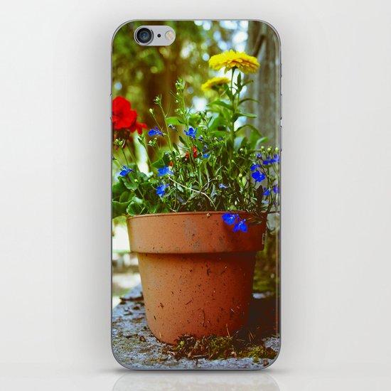 Spring details iPhone & iPod Skin