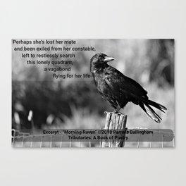 Morning Raven   Pamala Ballingham Canvas Print