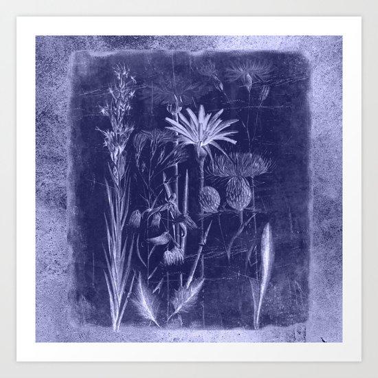 floral cyanotype Art Print