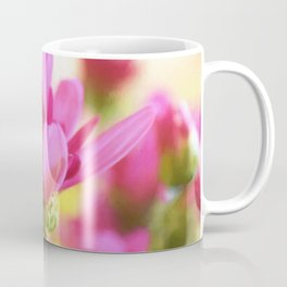 Pink mum with peack background Coffee Mug