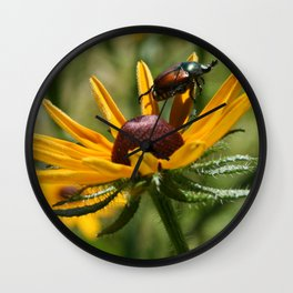 bugged out Wall Clock