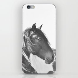 Stallion in black and white iPhone Skin