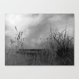 Tall Grass in the Morning Canvas Print