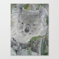 koala Canvas Prints featuring Koala by Cordula Kerlikowski