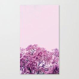 Cascade of pink flowers Canvas Print
