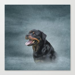Rottweiler dog Canvas Print