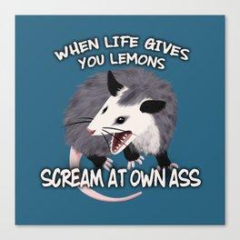 Possum Wisdom Canvas Print
