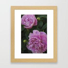 Full Bloom Framed Art Print