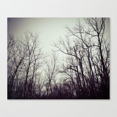 Tree branches in the sky Canvas Print