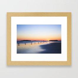 "All My ""Ducks"" In A Row Framed Art Print"