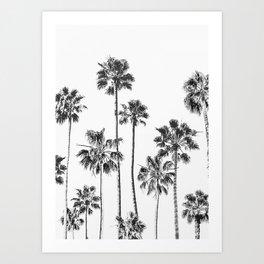 Black And White Palms Art Print