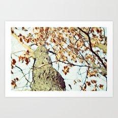 season of blessings Art Print
