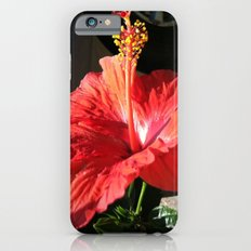 Hibiscus Slim Case iPhone 6s
