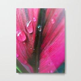 pink droplet Metal Print