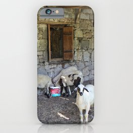 Being Watched by the Lamb iPhone Case