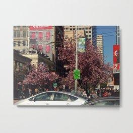 Pike and Pine, Spring Metal Print