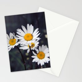 Ox-eye daisies Stationery Cards