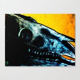 Horse Skull Canvas Print