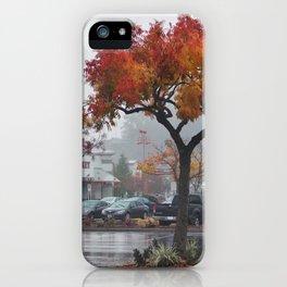 Santa Cruz fall iPhone Case
