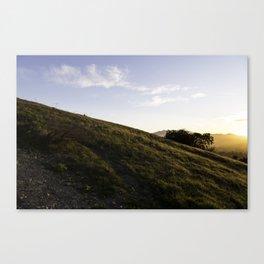 Thousand Oaks Canvas Print