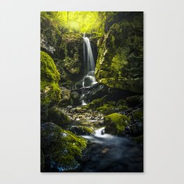 Naturaleza de fantasia Canvas Print