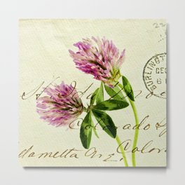 Clover on an Envelope. Metal Print