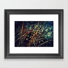 Spring Budding Framed Art Print