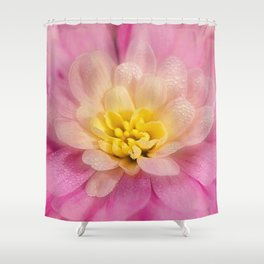 Sunshine and Morning Dew Shower Curtain
