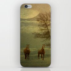 A Winters Evening iPhone & iPod Skin