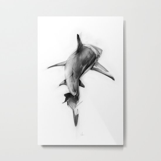 Shark II Metal Print